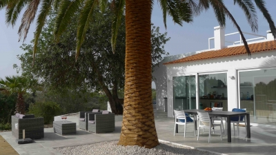 Montinho B&B Terrace and palm